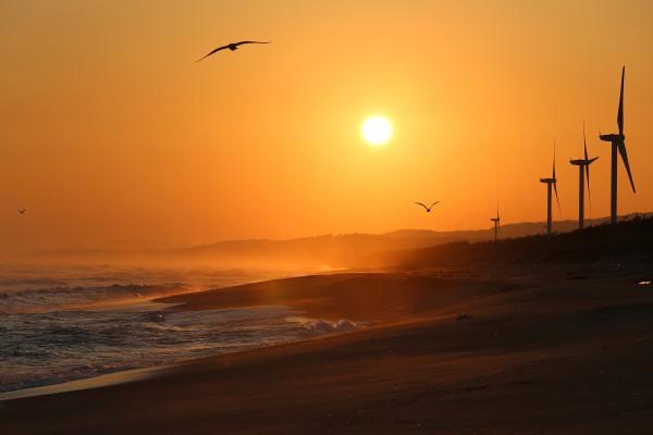 98朝陽の浜
